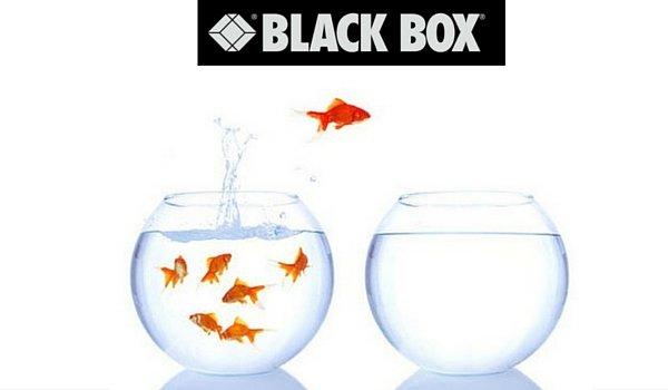 Black Box annuncia il cambio di sede in Italia